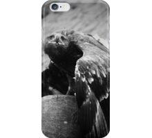 Eagle, Bird of Prey iPhone Case/Skin