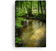 Peaceful stream scene Canvas Print