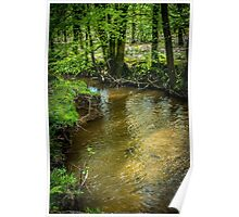 Peaceful stream scene Poster