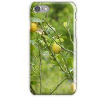 Lemon Tree iPhone Case/Skin