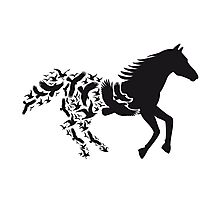 Black horse silhouette with flying birds Photographic Print