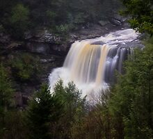Blackwater Falls State Park by Kathy Weaver