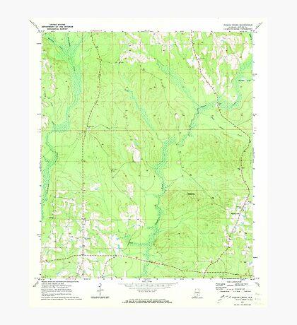 USGS TOPO Map Alabama AL Pigeon Creek 304837 1971 24000 Photographic Print