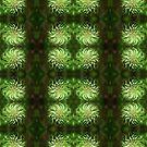Metalasia leaves motif by Lee Jones