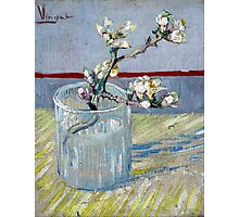 Vincent van Gogh Spring Flowering Almond in a Glass Photographic Print