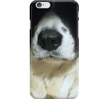Dog's nose close up iPhone Case/Skin