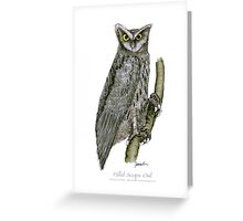 Pallid Scops Owl, tony fernandes Greeting Card