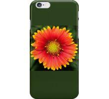 Blanket flower against green iPhone Case/Skin