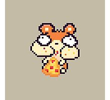 Hamster Eating Pizza Pixel Art Photographic Print
