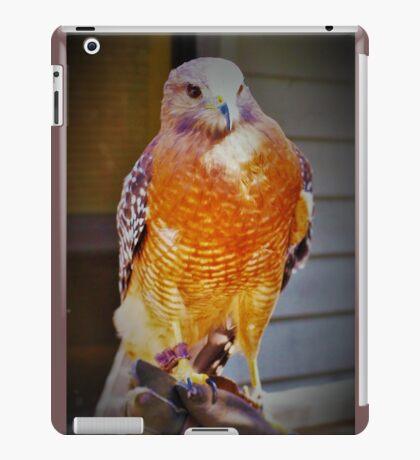 Tethered iPad Case/Skin
