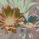 Designer daisies by ♥⊱ B. Randi Bailey