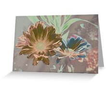 Designer daisies Greeting Card