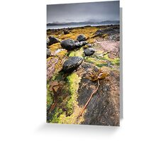 Udrigle Bay rocks Greeting Card