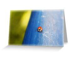 Free As a Lady Bug Greeting Card