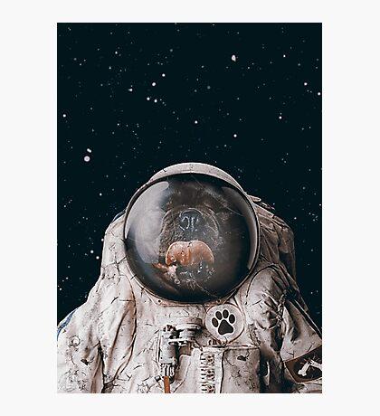 Space Dog Photographic Print