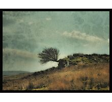 The Timeless Landscape Photographic Print