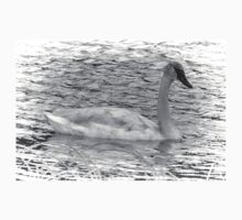 Trumpeter Swan (BW) One Piece - Long Sleeve