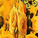 Golden Summer by Junior Mclean