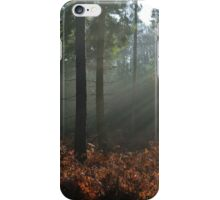 Beams from above iPhone Case/Skin
