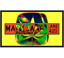 Mary Jane Lane - Leaf Photographic Print
