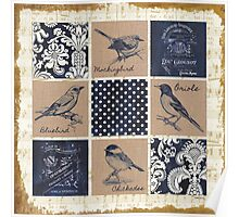 Vintage Songbirds Patch 1 Poster
