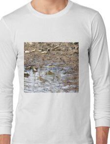 Wagtail Long Sleeve T-Shirt