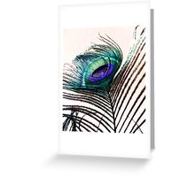 Coloured Feather Greeting Card
