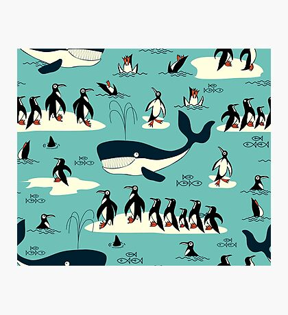 Whales, Penguins and other friends Photographic Print