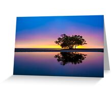 Sunrise Tree and Water Reflections Greeting Card
