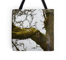 Mossy Limbs  Tote Bag