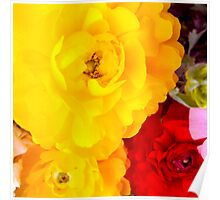 Vibrant Flowers - Yellow flowers and red flower Poster