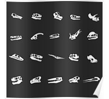 Dinosaurs, Marine, and flying reptiles O' My Poster