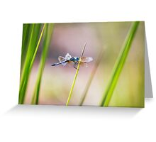 Dragonfly by Pond #1  Greeting Card