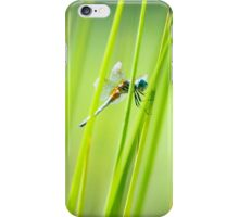 Dragonfly by Pond #2  iPhone Case/Skin