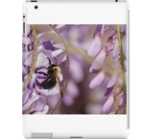 A bumblebee buzy on a Wisteria flower iPad Case/Skin
