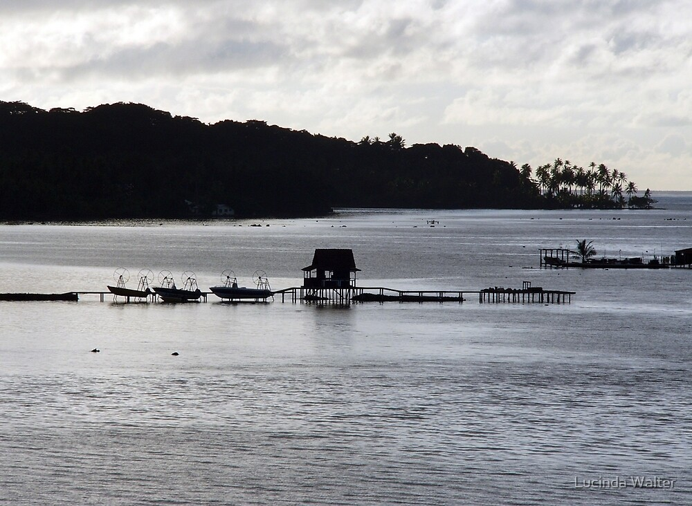 Oyster Farm at Dusk by Lucinda Walter