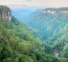 Fitzroy Falls, Morton National Park, New South Wales, Australia by Michael Boniwell