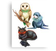 Gen 7 Starters Canvas Print