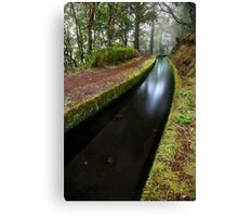The Approaching Curve Canvas Print