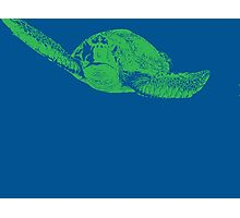 Blue & Green Turtle Photographic Print