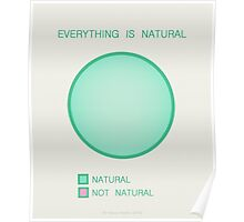 Everything is Natural Poster