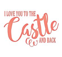 To The Castle & Back Photographic Print