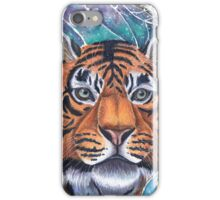 Stripes and Spirals iPhone Case/Skin