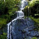 Falls by Richard Hamilton-Veal