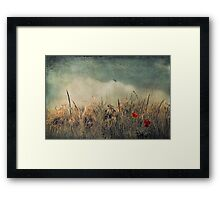 Chaos and Beauty Framed Print