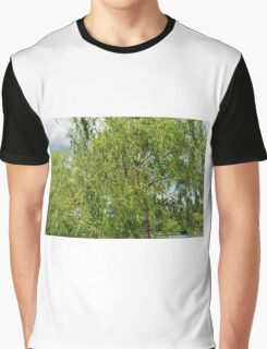 Trees in the park. Graphic T-Shirt
