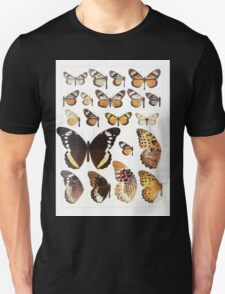 The Macrolepidoptera of the world a systematic account of all the known Butterflies Moths Adalbert Seitz V1 V3 1906 171 Actinote Clothilda T-Shirt