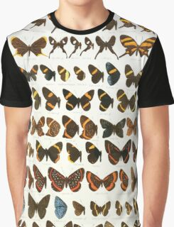The Macrolepidoptera of the world a systematic account of all the known Butterflies Moths Adalbert Seitz V1 V3 1906 229 Barbicornis Monethe Graphic T-Shirt