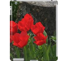 Tulips by a Tree Stump iPad Case/Skin