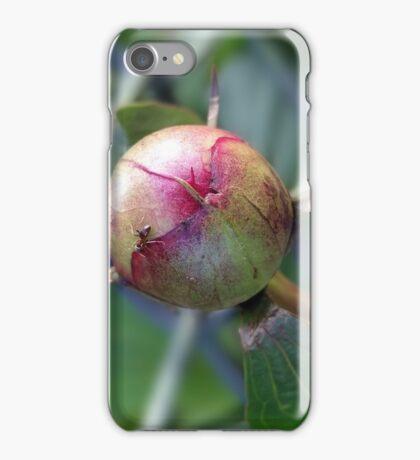 peony bud iPhone Case/Skin